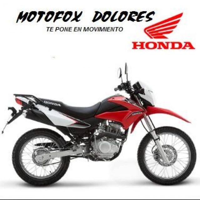 MOTOFOX DOLORES